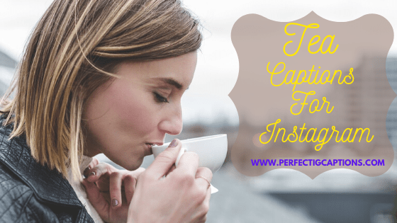 85+ Tasty Tea Captions For Instagram for Your Energetic Post